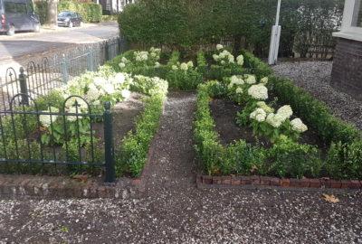 Aanleg border tuin